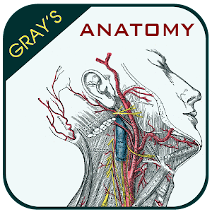 Gray's Anatomy - Anatomy Atlas 2020 Online PC (Windows / MAC)