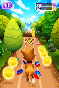 Pet Run - Puppy Dog Game for pc