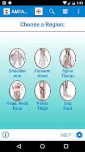 AMTA Anatomy for pc