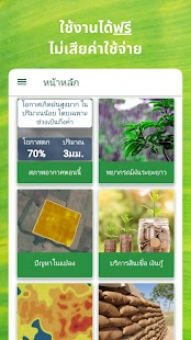 Ricult Thailand for pc