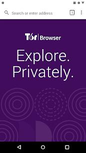 Tor Browser (Alpha) 1