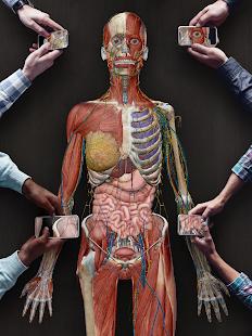 Human Anatomy Atlas 2021:u00a0Complete 3D Human Body 2021.2.27 Screenshots 23