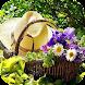 DIY Gardening Tips - Androidアプリ