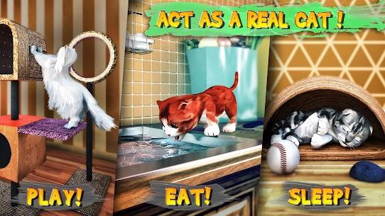 Cat Simulator 4