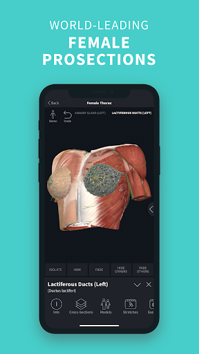 Complete Anatomy u201821 - 3D Human Body Atlas 6.4.0 Screenshots 6