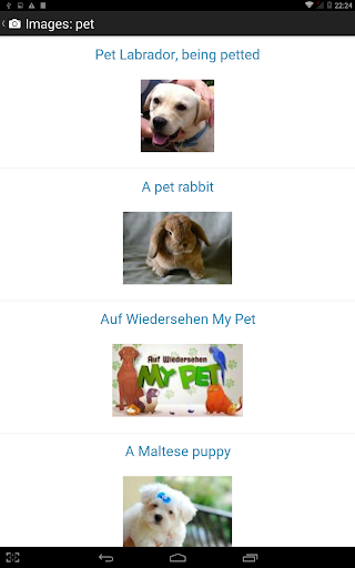 Shwebook Dictionary Pro  Screenshots 14
