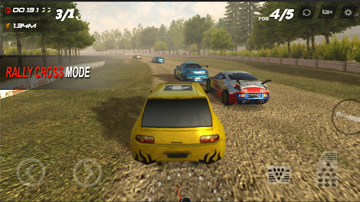 Super Rally 3D : Extreme Rally Racing 3.8.3 screenshots 1