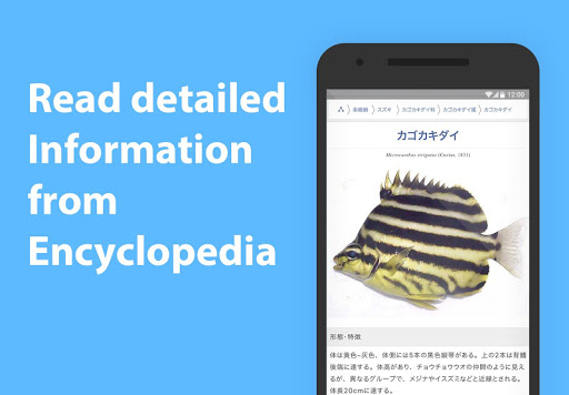 Mikke Fish ID android2mod screenshots 3