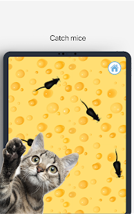Meow – Games for Cats & Cat Sounds App