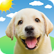 Weather Puppy - App & Widget Weather Forecast - Androidアプリ
