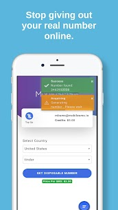 MobileSMS.io Receive SMS Online Disposable Numbers 2