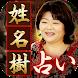 名前だけで核心占う【占い師豊川稲荷の母・天胡】姓名樹占い - Androidアプリ