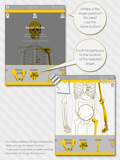 Enjoy Learning Anatomy puzzle 3.2.3 screenshots 8