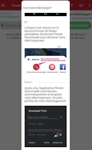 Pinterest Video Downloader 1.1.1 screenshots 2