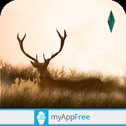 Elixir - Deer Running Game app thumbnail