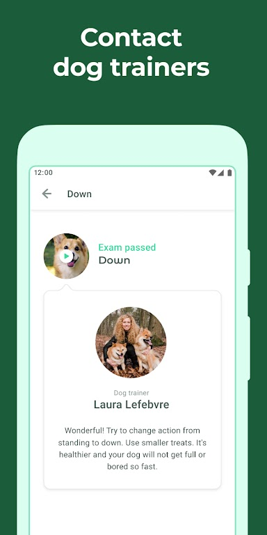 Dog & Puppy Training App with Clicker by Dogo  poster 1