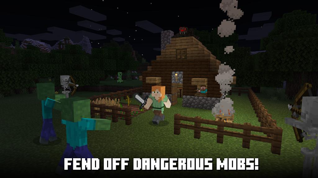 Minecraft  poster 3