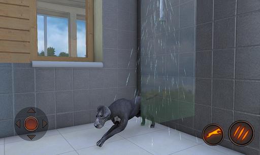 Great Dane Dog Simulator 1.1.0 screenshots 1