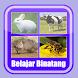 Belajar Membaca Binatang - Androidアプリ