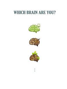 Photo Brain - Hard Memory Game