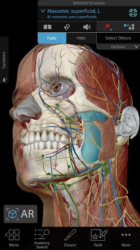 Human Anatomy Atlas 2019 for Springer 2019.1.40p Screenshots 1