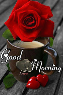 Good Morning Flowers and Roses Messages Images Gif