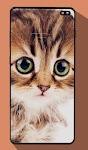 screenshot of Cute Cat Wallpapers