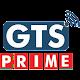 GTS Prime Download on Windows