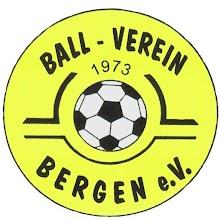 BV Bergen icon