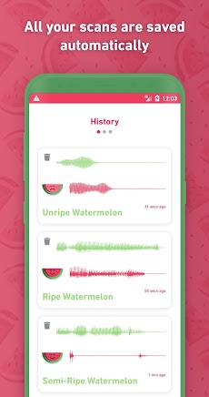 Melony: World First Watermelon Ripeness Detectorのおすすめ画像5