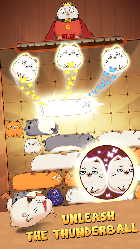 Haru Cats: Slide Block Puzzle 1.4.10 screenshots 4