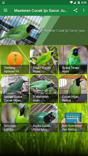 Download Masteran Cucak Ijo Gacor Juara Free For Android Masteran Cucak Ijo Gacor Juara Apk Download Steprimo Com