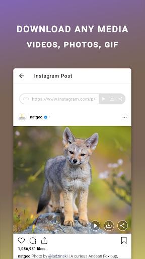 Friendly IQ - Smart tools for your social accounts apktram screenshots 2