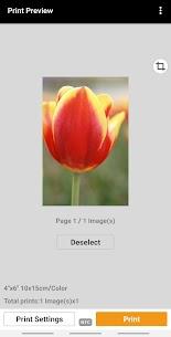 Canon PRINT Inkjet/SELPHY 4