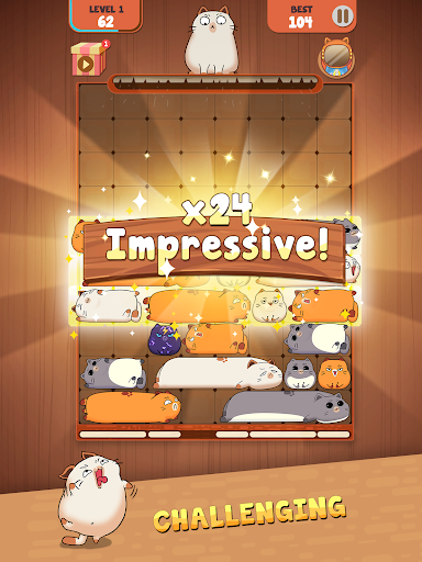 Haru Cats: Slide Block Puzzle 1.4.10 screenshots 14