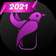 Private browser LavaBird - secret VPN browser