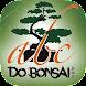 ABC do Bonsai