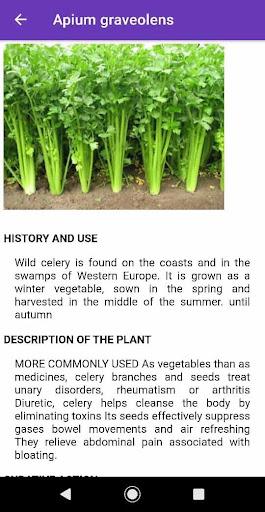 medicinal plants : natural treatment remedy screenshot 3