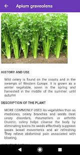 Medicinal plants : natural treatment remedy