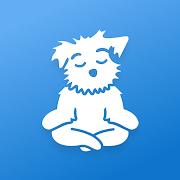 Meditation for Sleep and Calm | Down Dog