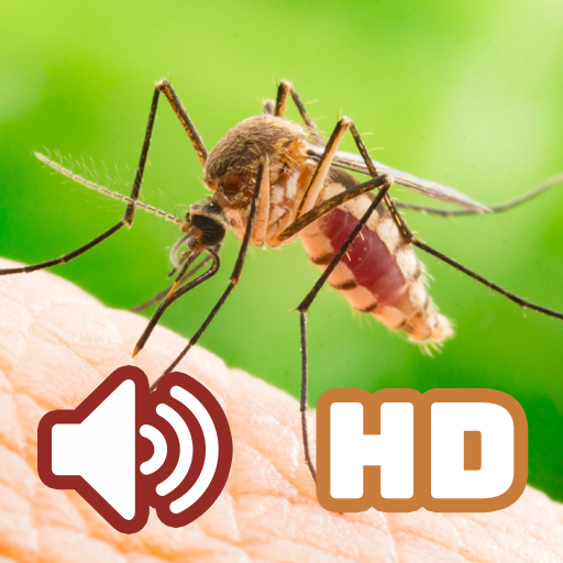 Suara Nyamuk Hd Apps On Google Play