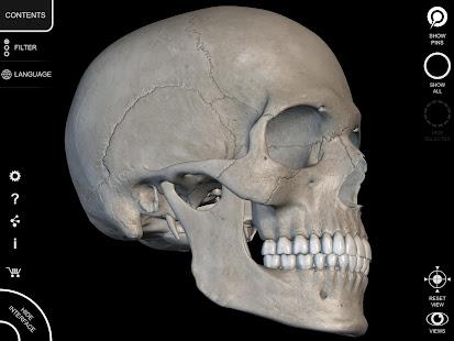 Skeleton | 3D Anatomy 2.5.3 Screenshots 14