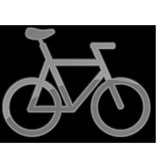 Bike Computer LT