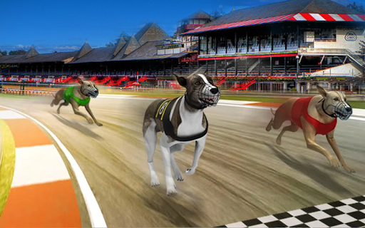 Pet Dog Simulator games offline: Dog Race Game  screenshots 2