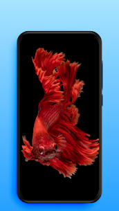 Live Wallpapers | Video Wallpapers 1.1.3 Apk + Mod 5