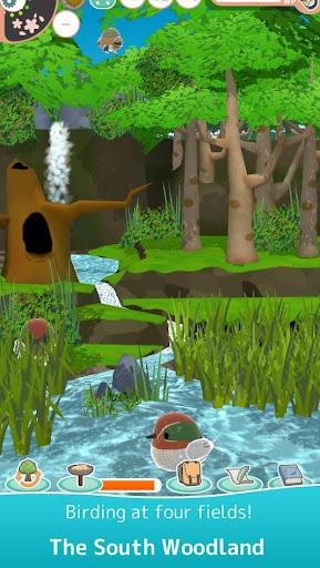 Tori Watch 2 - fluffy small birds - screenshots 2