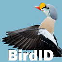 BirdID - European bird guide and quiz