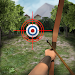 Archery Big Match Icon