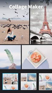 MagiCut – Auto Cut Paste Photo Editor 4