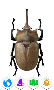 巨虫図鑑のおすすめ画像3